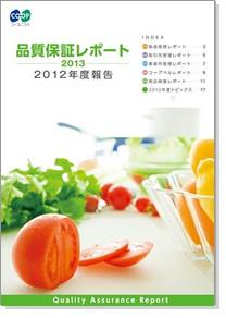 2012年度報告