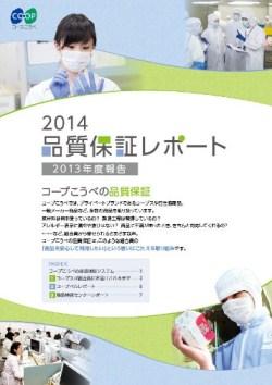 2013年度報告